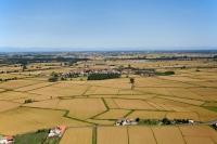 Veduta aerea di Torre Beretti e Castellaro