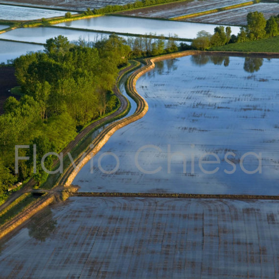 Vista-aerea-di-canali-utilizzati-per-trasportare-acqua-nelle-risaie
