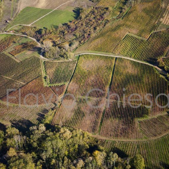 veduta-aerea-vigneti-colorati-in-autunno-in-oltrepo-pavese
