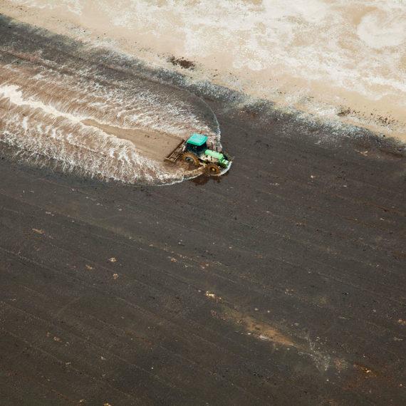 riprese fotografiche aeree risaia